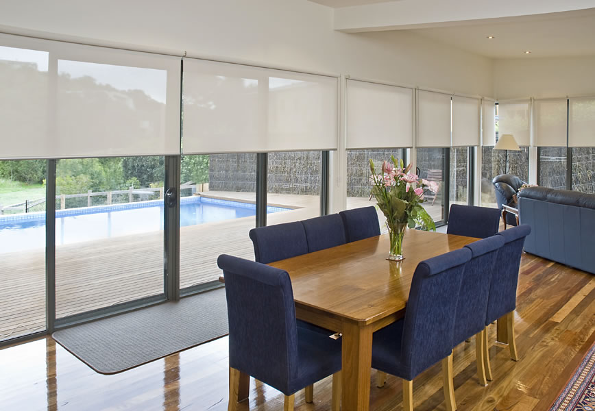 Roller Shades or blinds