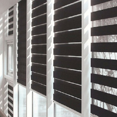 Zebra Blinds shades